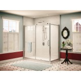 Fleurco Roma FRM2-4836-11-40 In-line Door and Panel with Return Panel